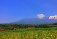 gunung di Malang #Indonesia *Tak tahu namanya